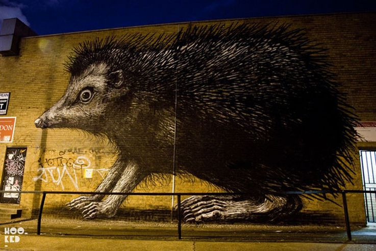 Huge Hedgehog Graffiti